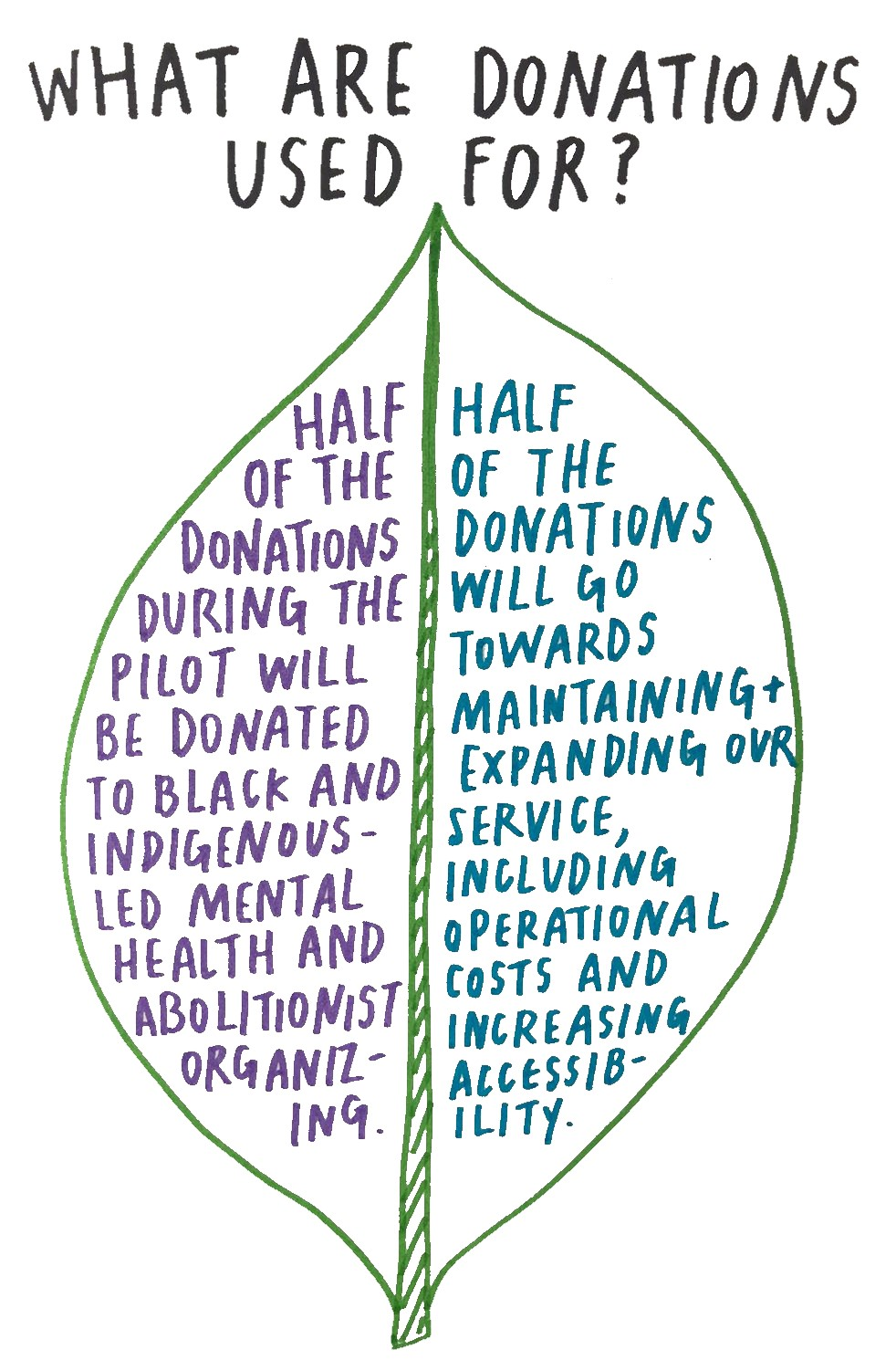 An image of a leaf that represents the total donations we receive during the pilot.