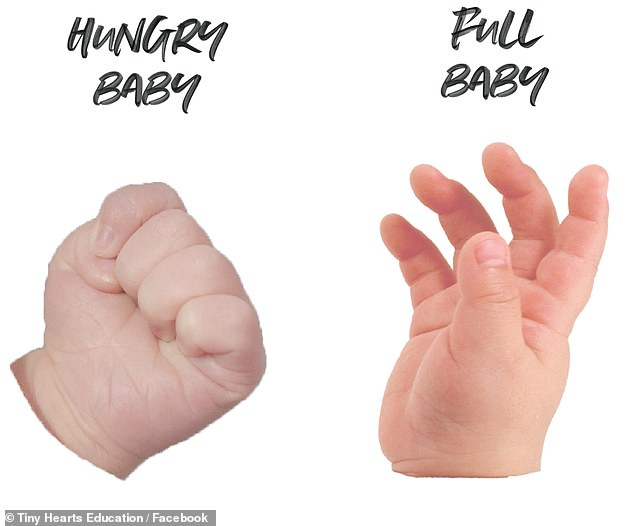 Clenched hand means hungry, relaxed hand means full.