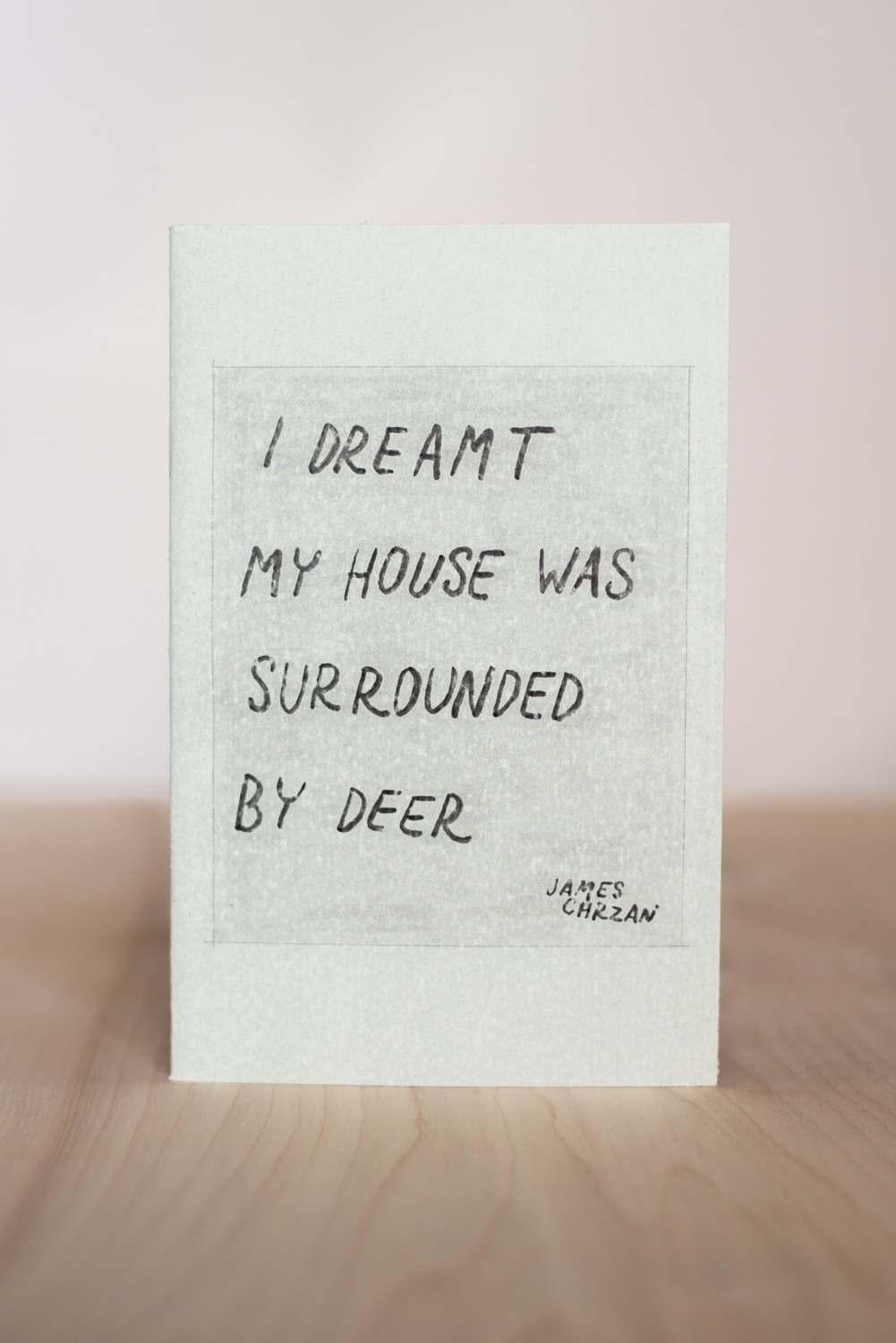 I Dreamt My House Was Surrounded By Deer