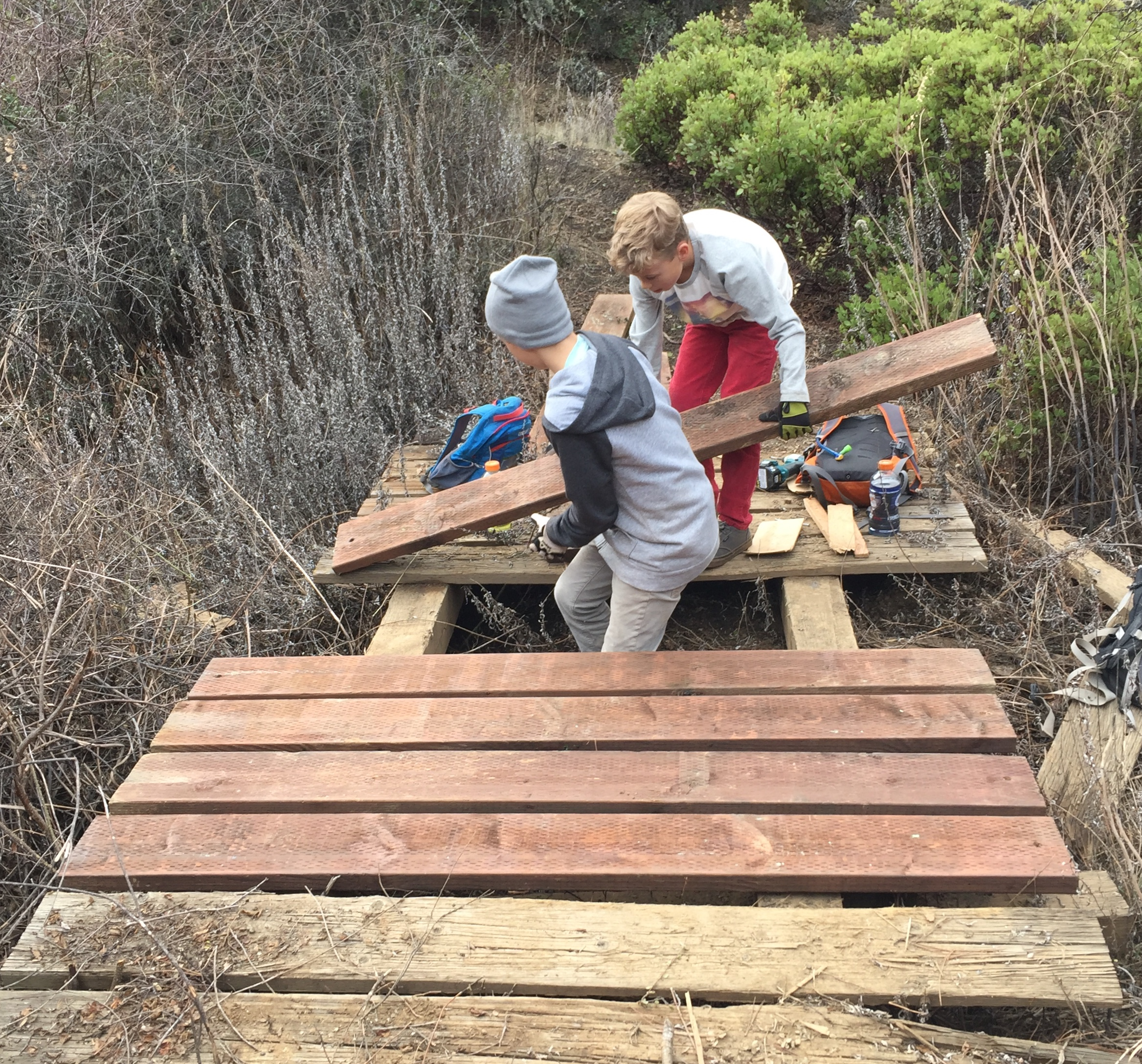 Projects - Friends of Cow Mountain