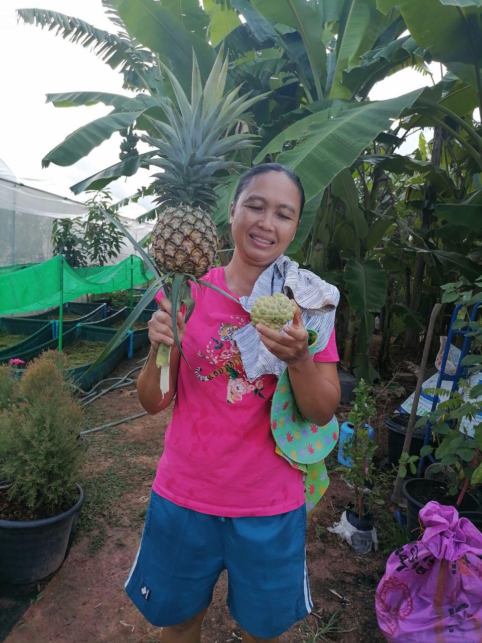 pineapple and custardapple