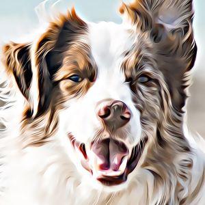 Thumbnail for Dog Name Generator
