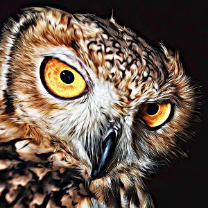 Thumbnail for Owl Name Generator