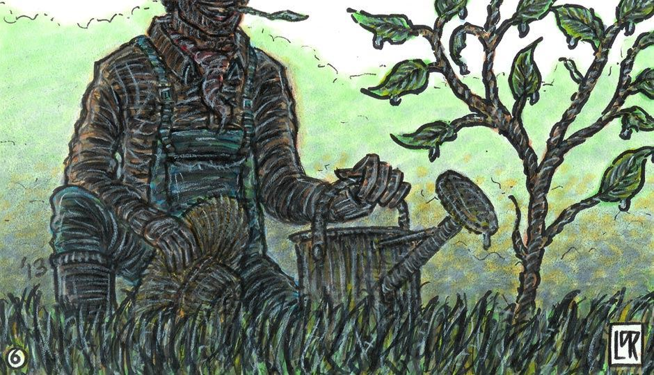 Image for The Orchard