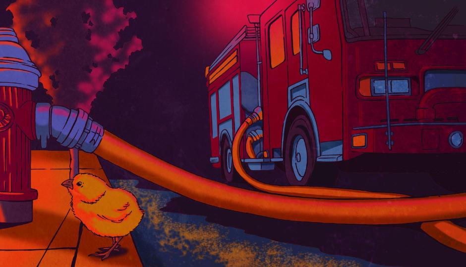 Image for Spring Firefighter