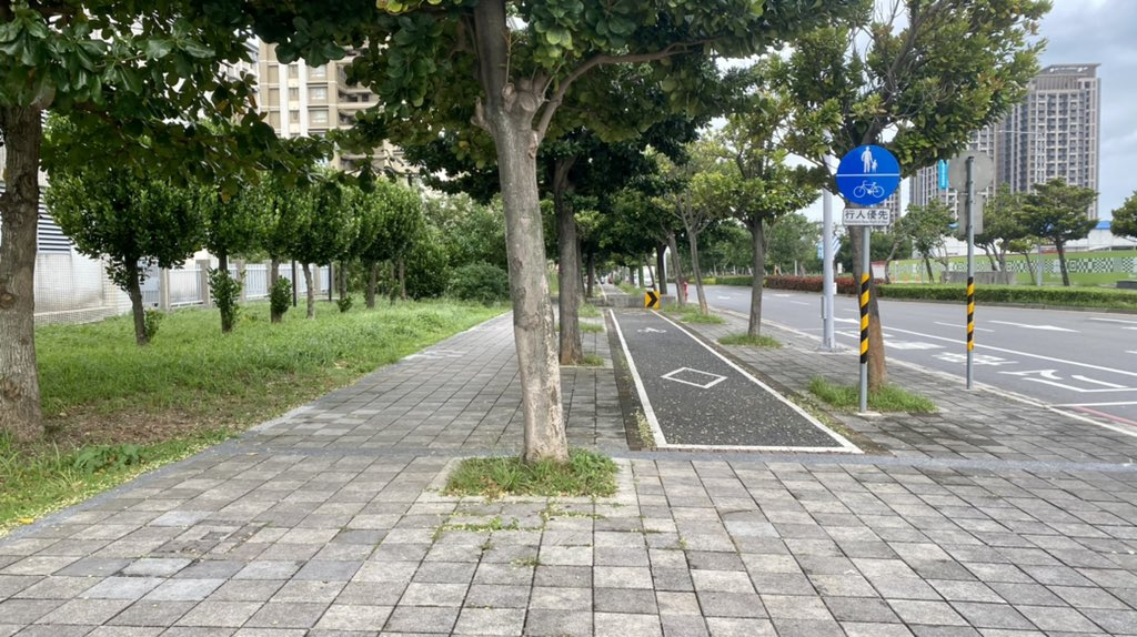 Brick sidewalk with raised paved bikelane and trees.