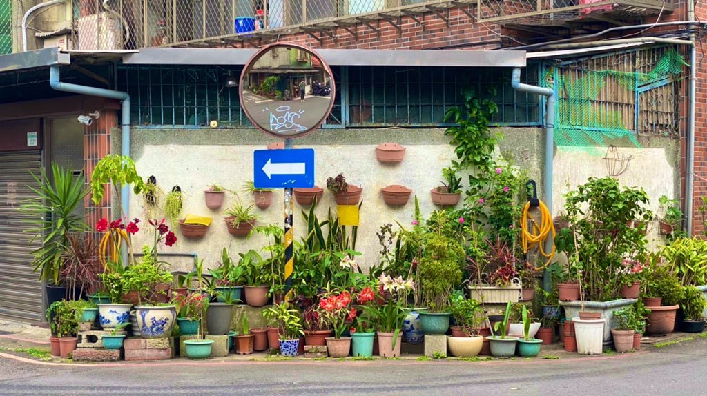 Side of a building with many potted plants