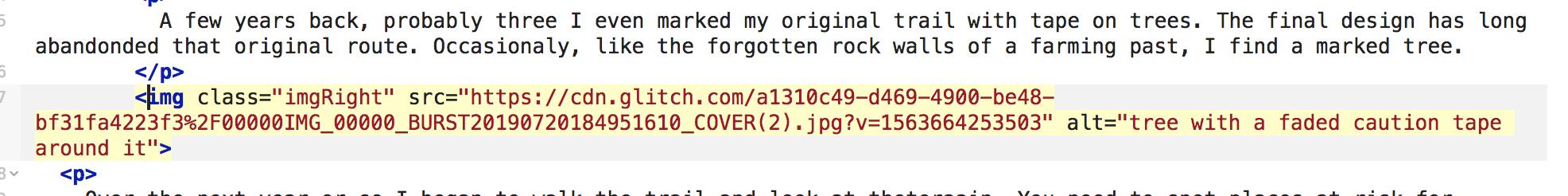 screenshot of highlighted img tag