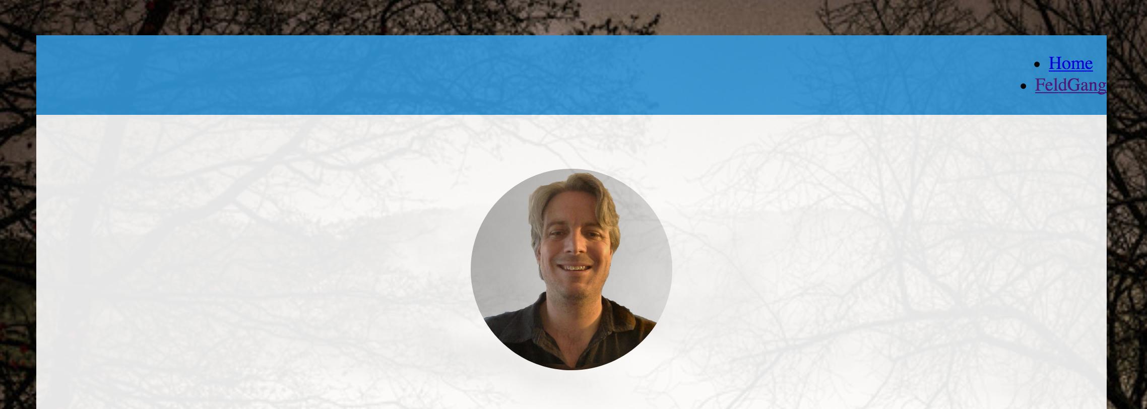 screenshot of website with nav