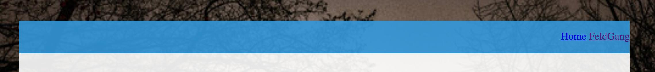 screenshot of updated nav