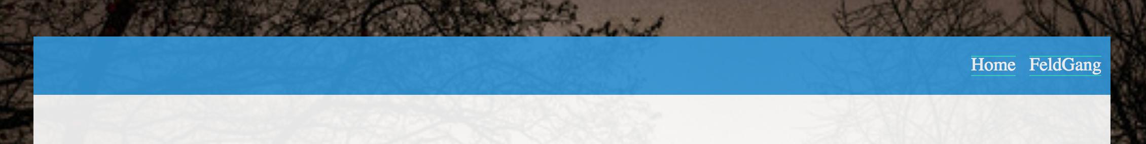 screenshot of nav with borders